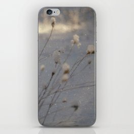 winter dust iPhone Skin