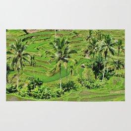 Greenery paddy fields rice crops Rug