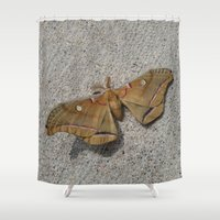 moth Shower Curtains featuring Moth by Deb MacNeil