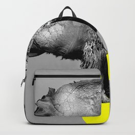 Buffalo Backpack