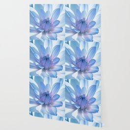 Dahlia blue 202 Wallpaper