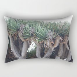 Dragon of San Diego Rectangular Pillow
