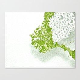Green Bubbles Canvas Print