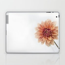 Dahlia Flower Laptop & iPad Skin