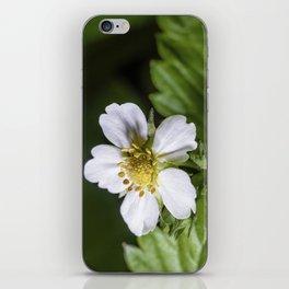 Strawberry flower iPhone Skin