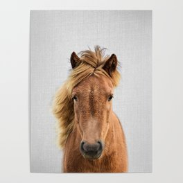 Wild Horse - Colorful Poster