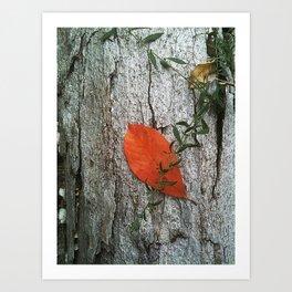Leaf On Fire Art Print