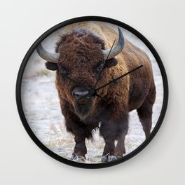 In The Presence Of Bison 2  Wall Clock