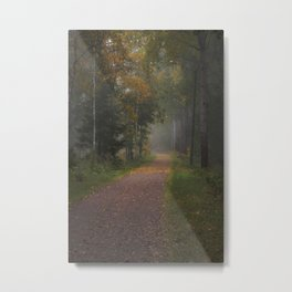 Misty autumn path Metal Print