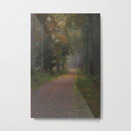 Misty autumn path Metal Print