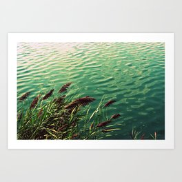 Central Park Water Art Print
