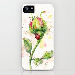 Ladybug Lane iPhone Case