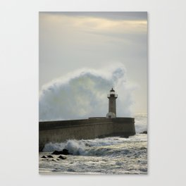 the fury of the sea Canvas Print