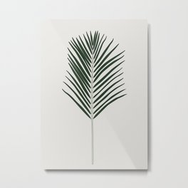 Areca Palm Branch Illustration Metal Print