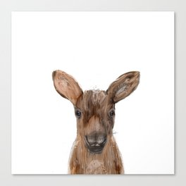 littlest moose Canvas Print