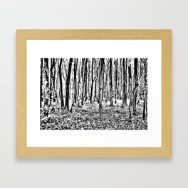Fall in the Woods-b&w Framed Art Print