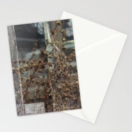 Double Exposures, January Series 6 Stationery Cards