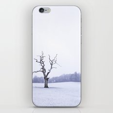 Portrait of a Tree iPhone & iPod Skin