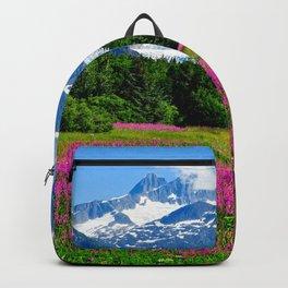 Alaska USA Nature Mountains Lupinus landscape photography Trees Shrubs mountain Scenery Bush Backpack