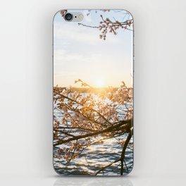 Sun Over the Horizon iPhone Skin