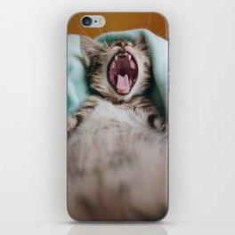 Kitten Yawning Like A Lion iPhone Skin