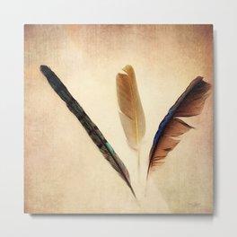 Feather Study II Metal Print