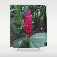ginger Shower Curtains featuring Ginger by Alex Braman