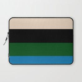 Color Stripe _003 Laptop Sleeve