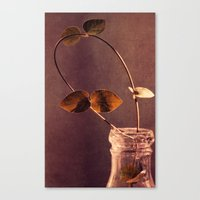 brown Canvas Prints featuring brown  by Claudia Drossert