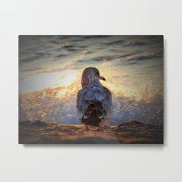 Seagull and sun-kissed wave Metal Print
