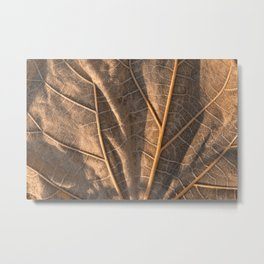 Gold Weathered Leaf Metal Print