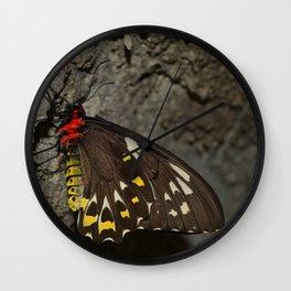 Birdwing Butterfly Wall Clock