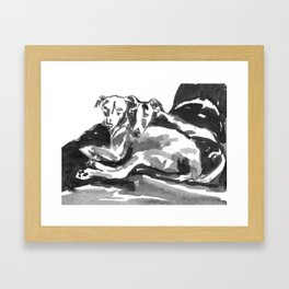 Greyhound -3 Framed Art Print