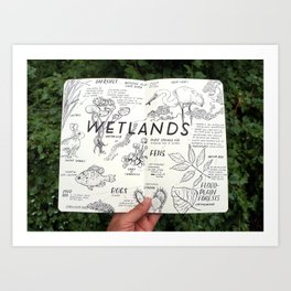 Wetlands Art Print