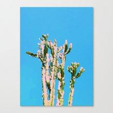 Cactus Beauty #cactus #society6 #decor #buyart Canvas Print