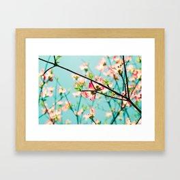 Aqua Spring Framed Art Print