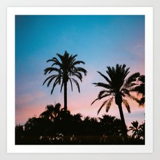 Palms in sunset Art Print