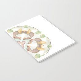 Nature Collaboration Notebook
