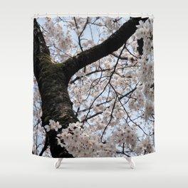 Sakura Blooming (Japan) Shower Curtain