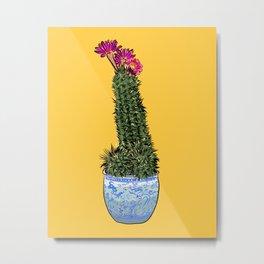 Cactus Succulent Bloom Metal Print