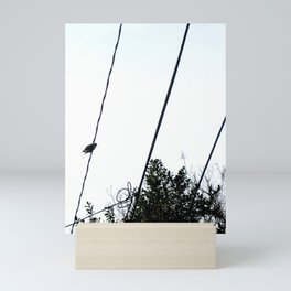 Bird on Wire Mini Art Print