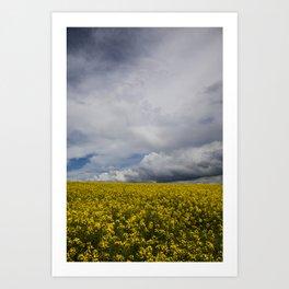 Sky and yellow Art Print