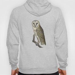 Owl in the Universe Hoody