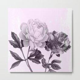 roses in purple and pink Metal Print