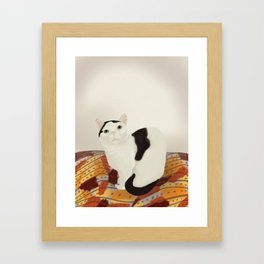 Cows the Cat Framed Art Print
