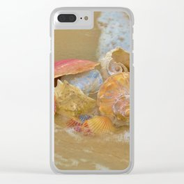 A collection Sea Shells by the Seashore with Sea Foam Clear iPhone Case
