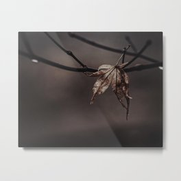 hanging on Metal Print