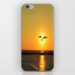 Icarus Vacationing in San Diego, California iPhone Skin