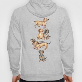 Dachshunds and dogwood blossoms Hoody