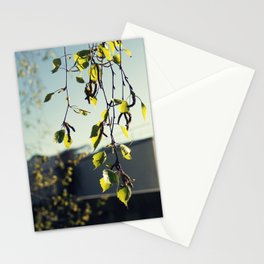 nature vs museum Stationery Cards